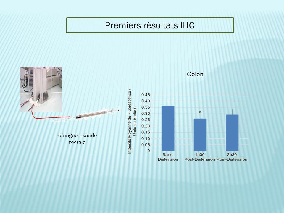 Premiers résultats IHC