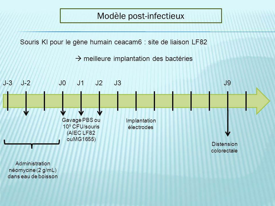 Modèle post-infectieux