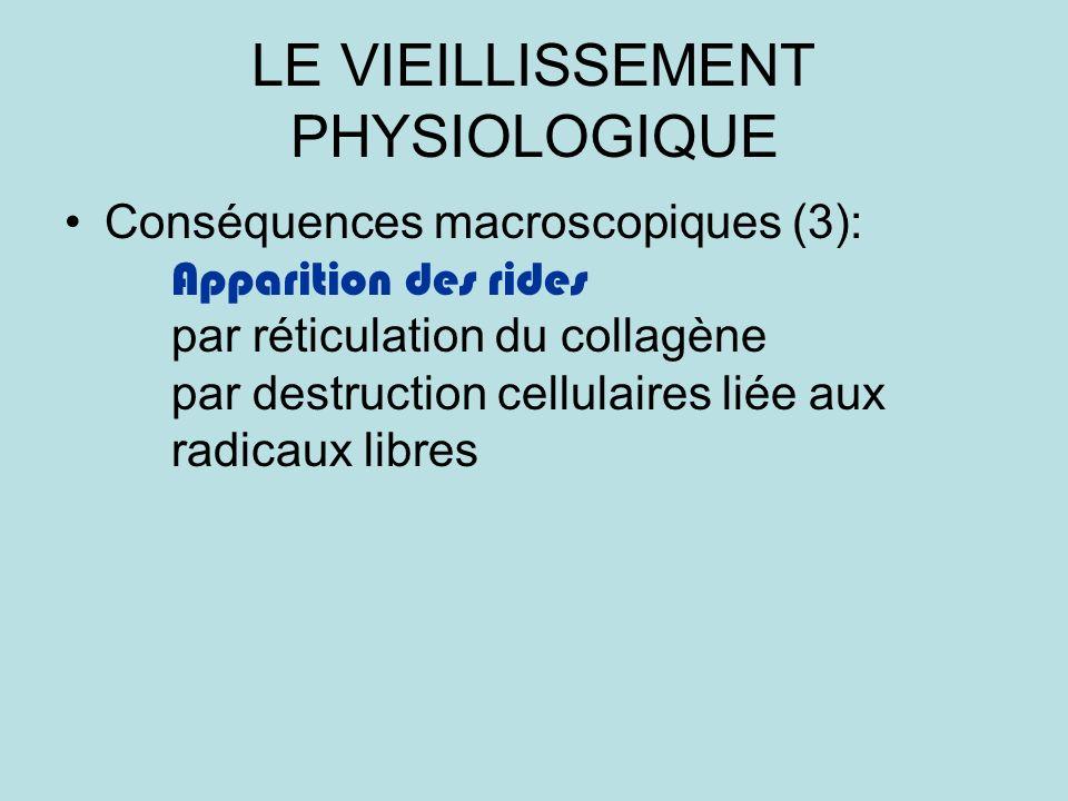 LE VIEILLISSEMENT PHYSIOLOGIQUE