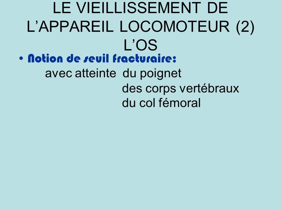 LE VIEILLISSEMENT DE L'APPAREIL LOCOMOTEUR (2) L'OS