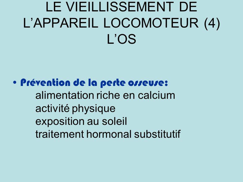 LE VIEILLISSEMENT DE L'APPAREIL LOCOMOTEUR (4) L'OS