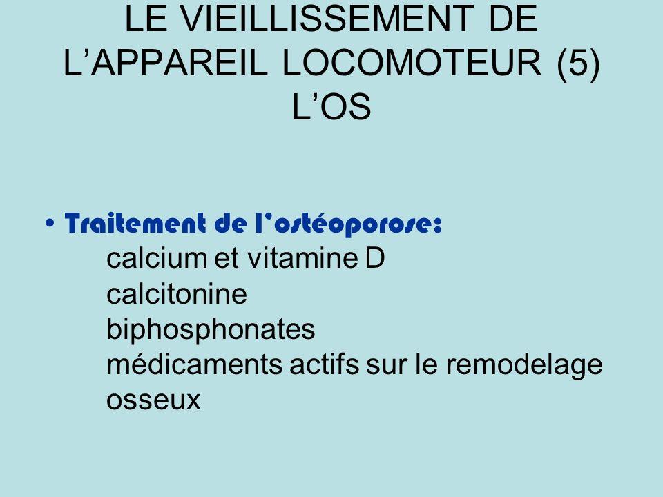 LE VIEILLISSEMENT DE L'APPAREIL LOCOMOTEUR (5) L'OS