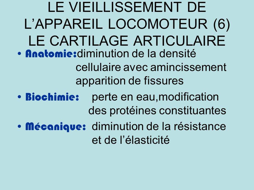 LE VIEILLISSEMENT DE L'APPAREIL LOCOMOTEUR (6) LE CARTILAGE ARTICULAIRE