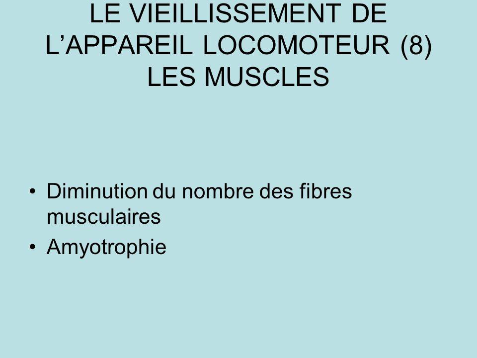 LE VIEILLISSEMENT DE L'APPAREIL LOCOMOTEUR (8) LES MUSCLES