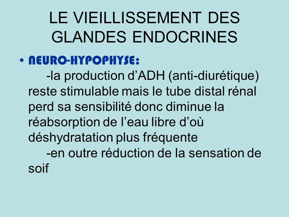 LE VIEILLISSEMENT DES GLANDES ENDOCRINES