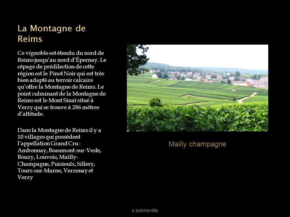 La Montagne de Reims Mailly champagne
