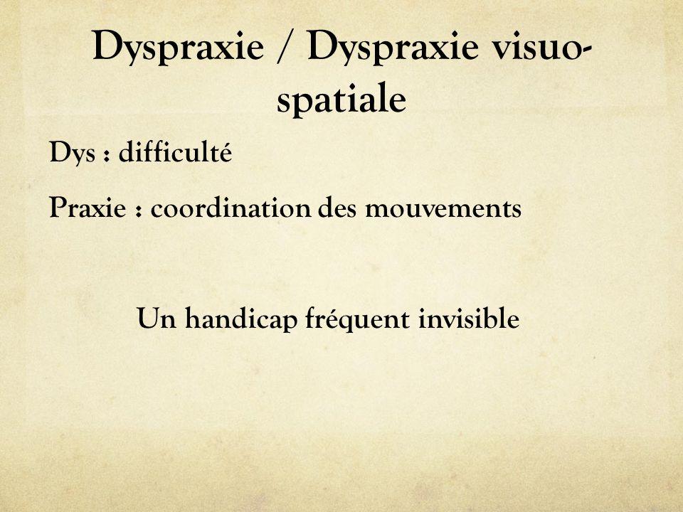 Dyspraxie / Dyspraxie visuo-spatiale