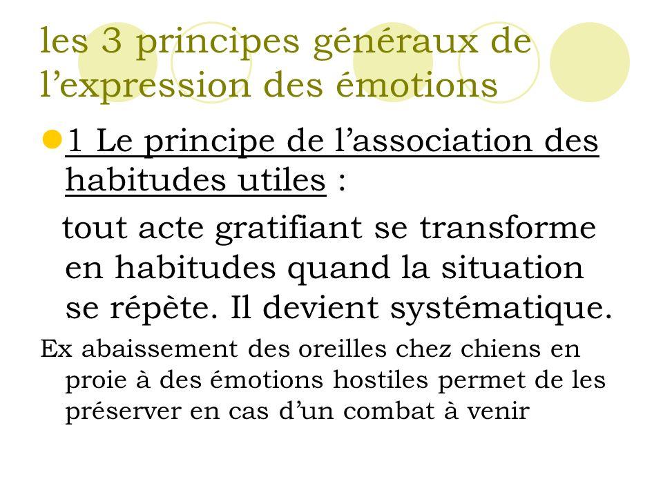les 3 principes généraux de l'expression des émotions