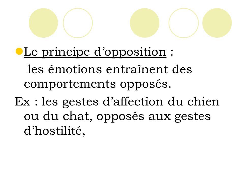 Le principe d'opposition :