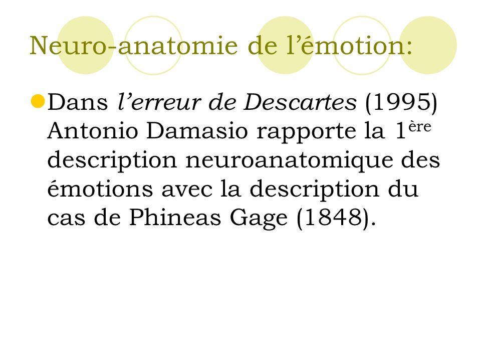 Neuro-anatomie de l'émotion: