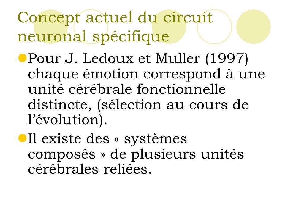 Concept actuel du circuit neuronal spécifique