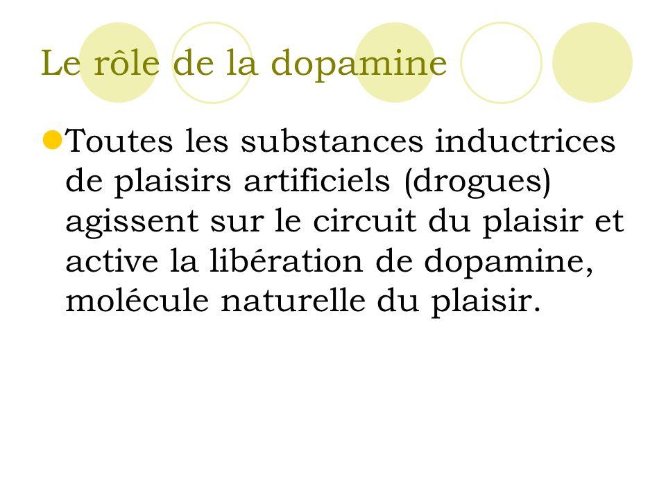 Le rôle de la dopamine
