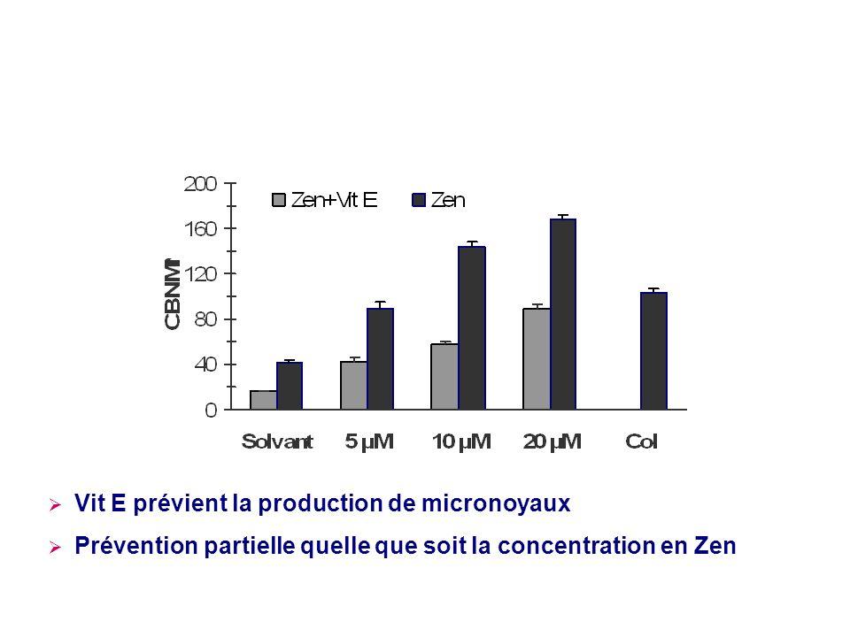 Vit E prévient la production de micronoyaux