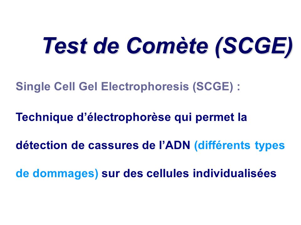 Test de Comète (SCGE) Single Cell Gel Electrophoresis (SCGE) :