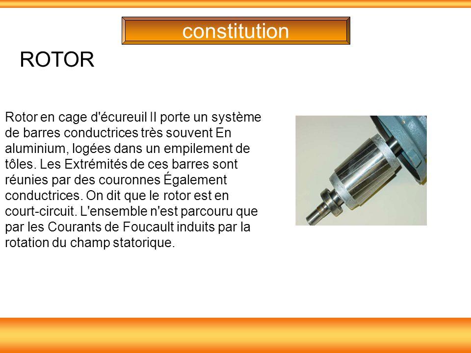 constitution ROTOR.