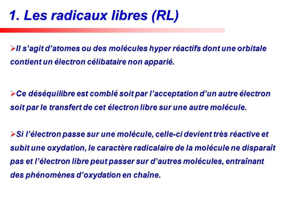 1. Les radicaux libres (RL)