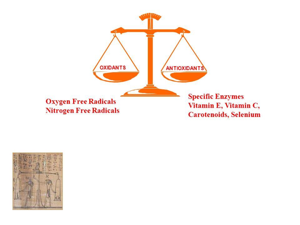 Nitrogen Free Radicals