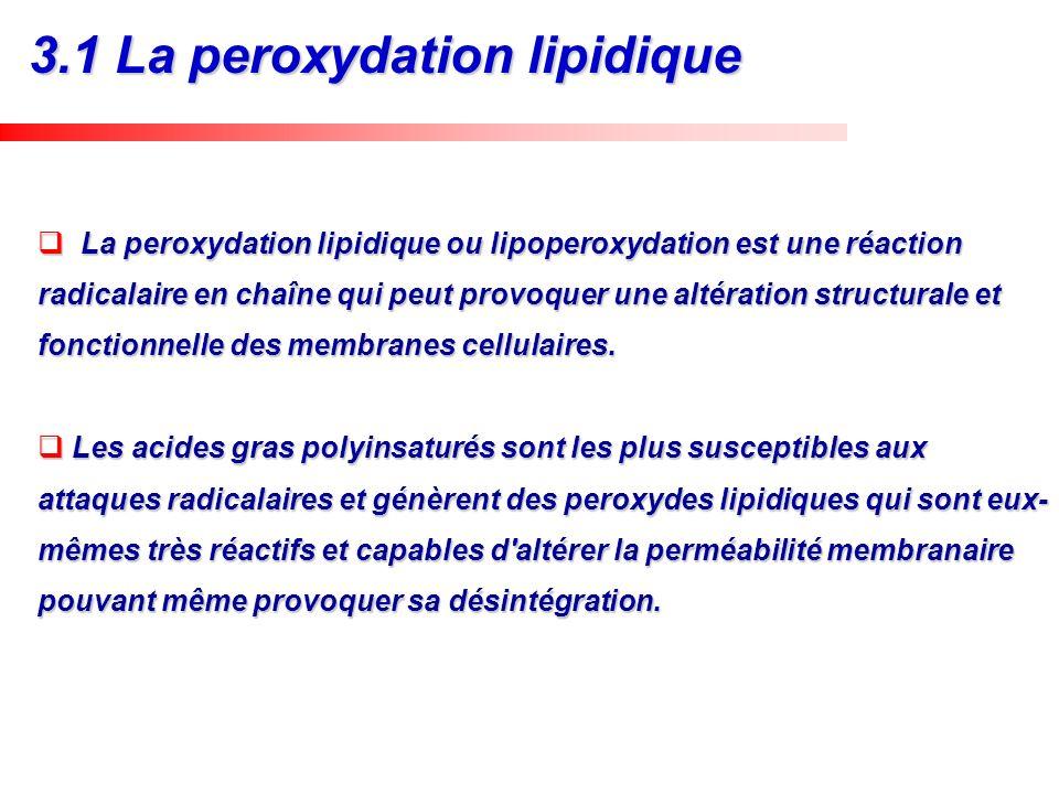 3.1 La peroxydation lipidique