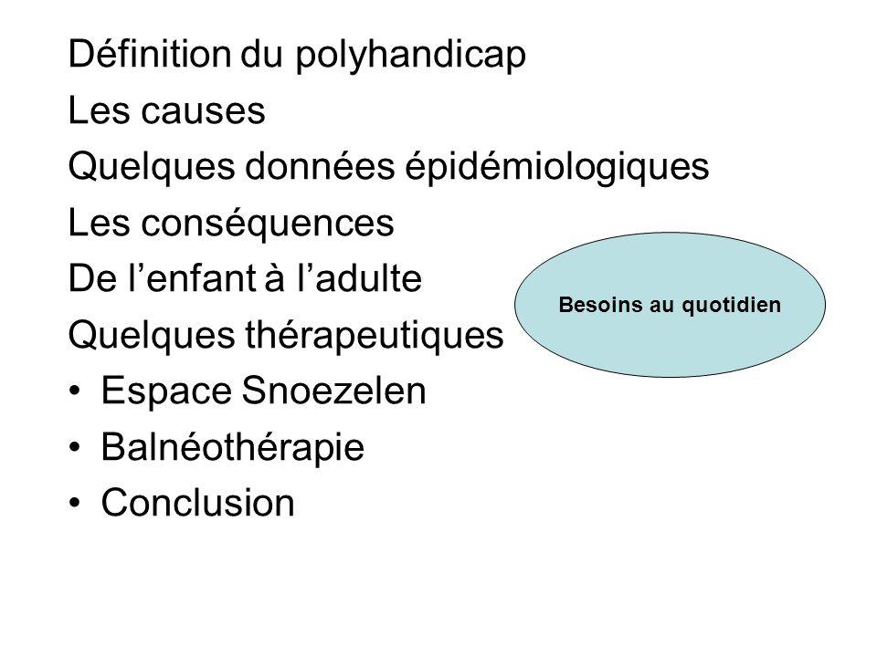 Définition du polyhandicap Les causes
