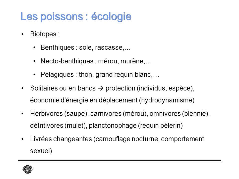 Les poissons : écologie