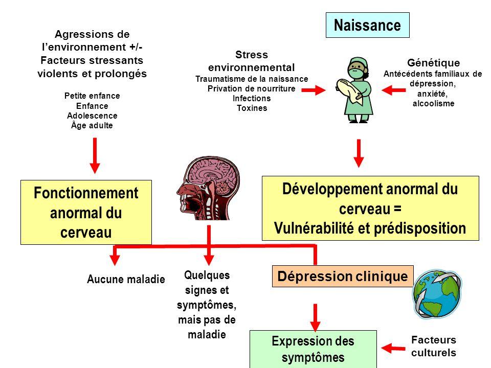 Développement anormal du cerveau = Vulnérabilité et prédisposition
