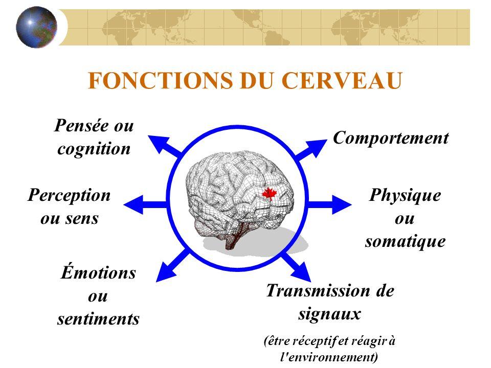 FONCTIONS DU CERVEAU Pensée ou cognition Comportement