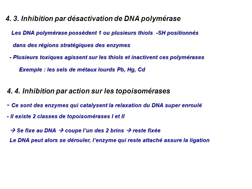 4. 3. Inhibition par désactivation de DNA polymérase