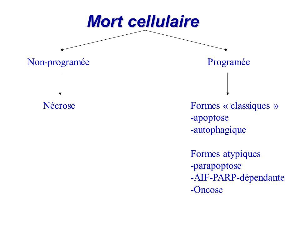 Mort cellulaire Non-programée Programée Nécrose Formes « classiques »