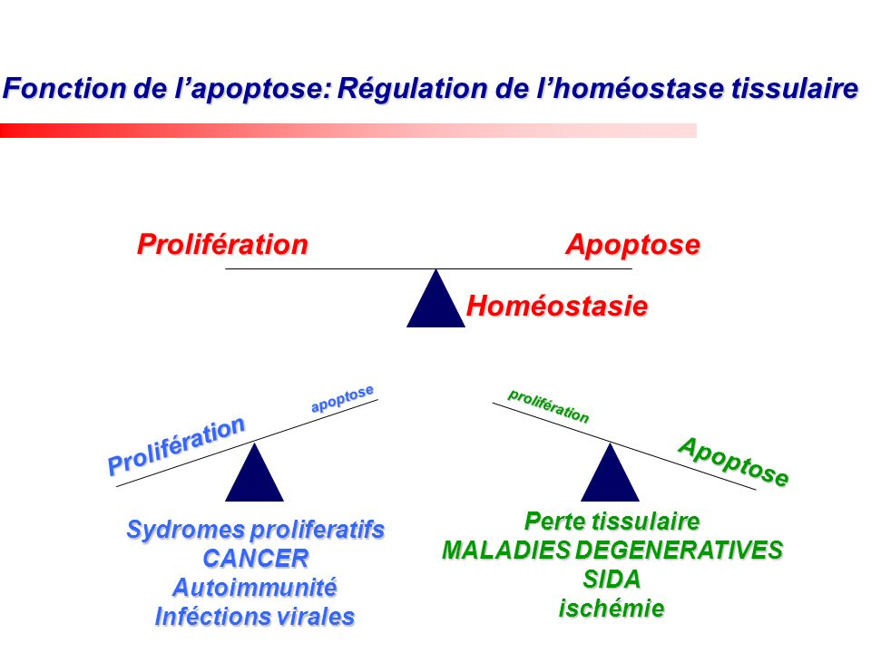 MALADIES DEGENERATIVES Sydromes proliferatifs