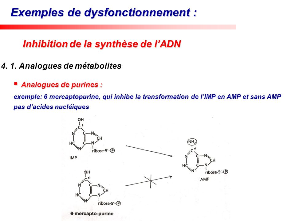 Exemples de dysfonctionnement :