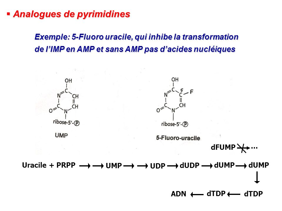 Analogues de pyrimidines