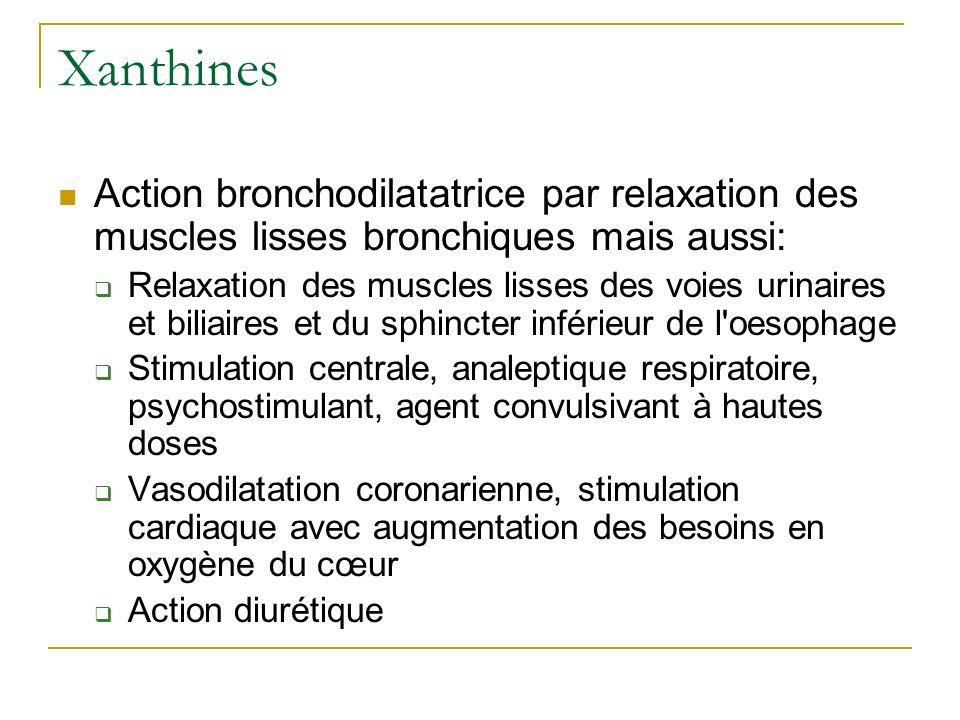 Xanthines Action bronchodilatatrice par relaxation des muscles lisses bronchiques mais aussi: