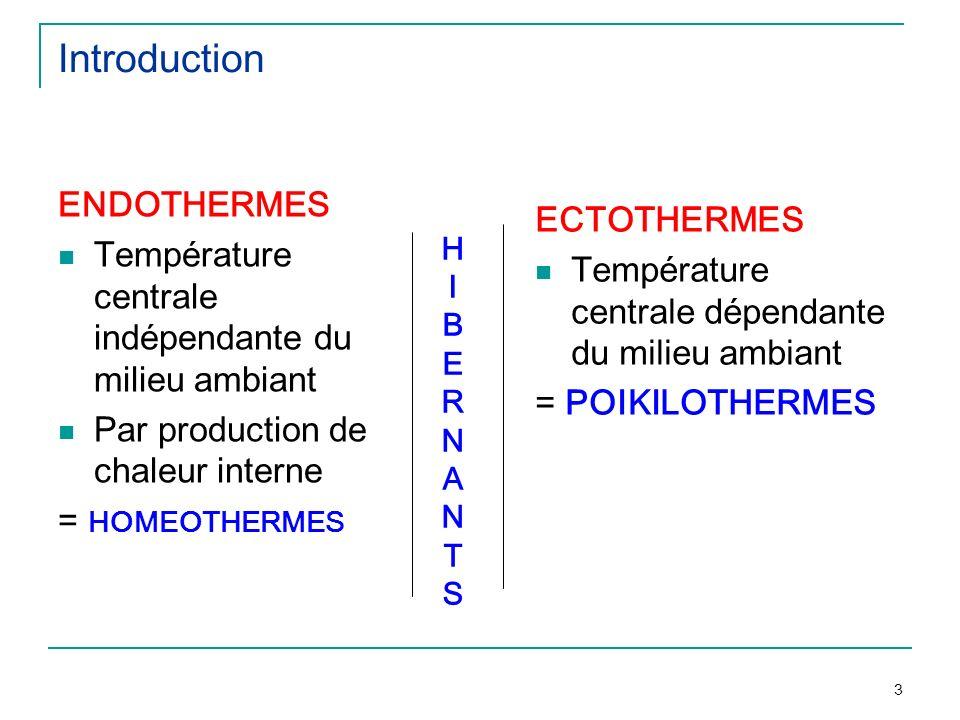 Introduction ENDOTHERMES ECTOTHERMES