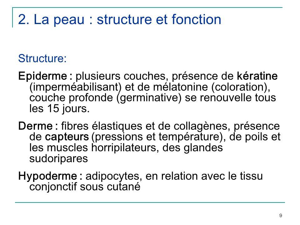 2. La peau : structure et fonction