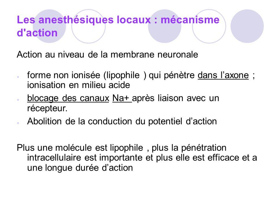 Les anesthésiques locaux : mécanisme d action