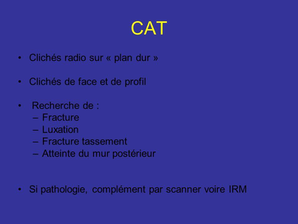 CAT Clichés radio sur « plan dur » Clichés de face et de profil