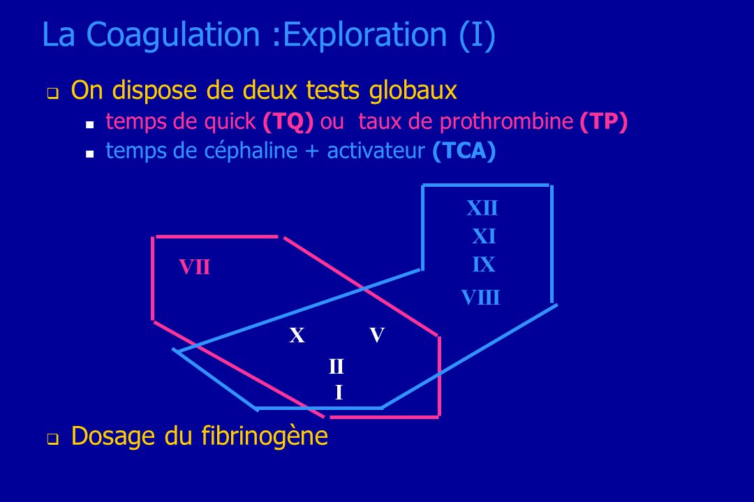 La Coagulation :Exploration (I)
