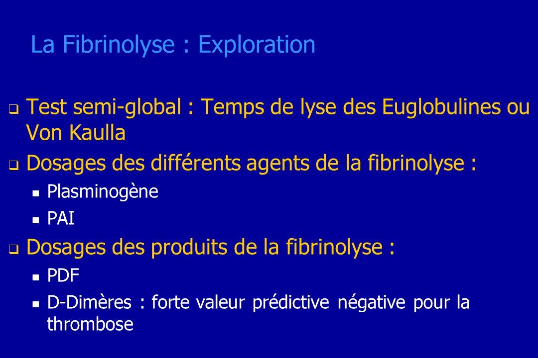 La Fibrinolyse : Exploration