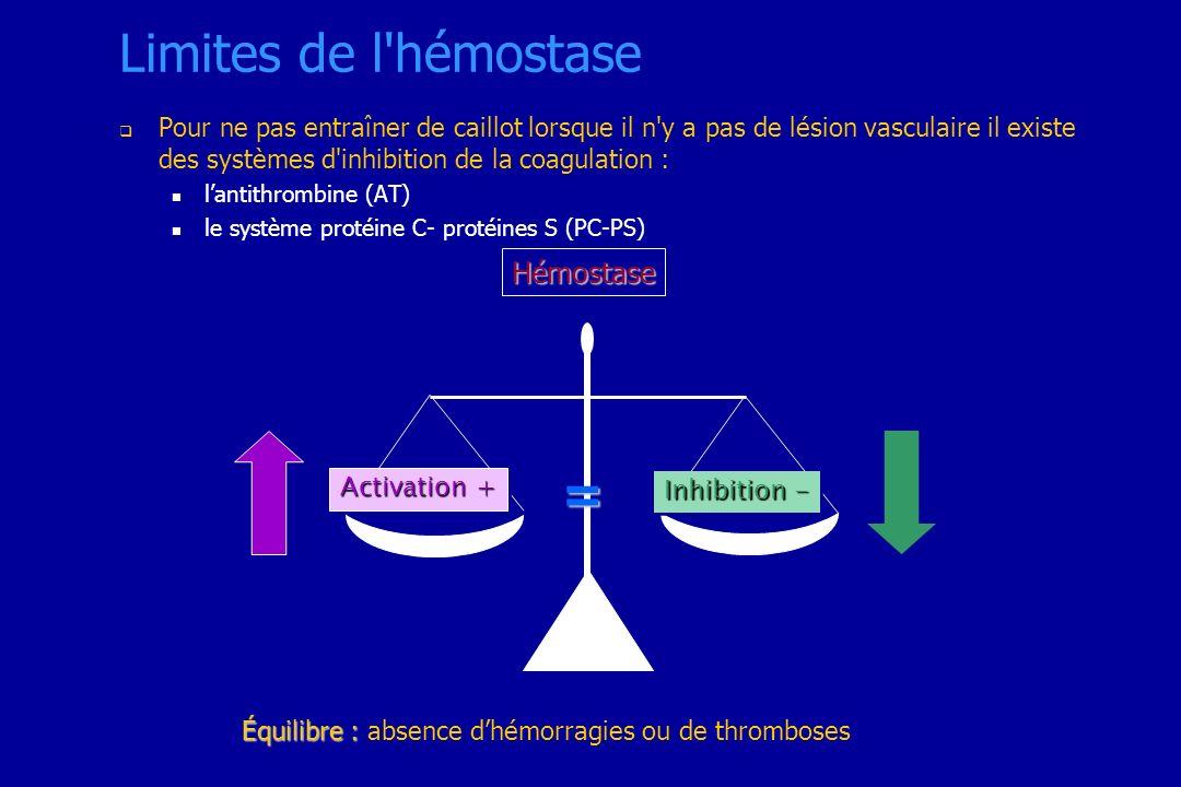 Limites de l hémostase = Hémostase