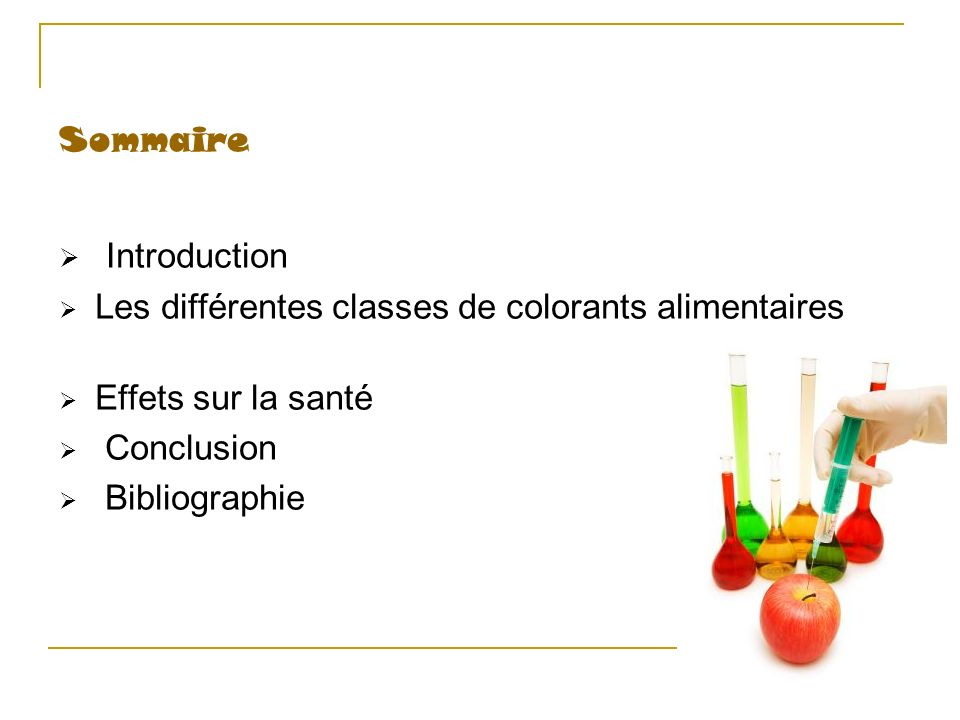 Introduction Sommaire