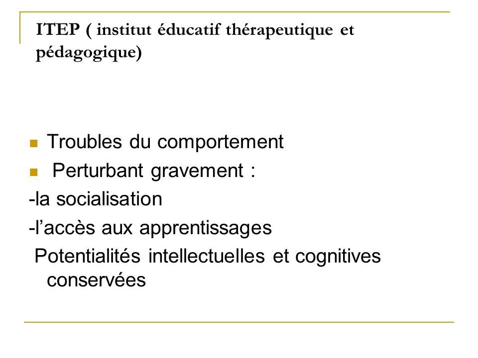 ITEP ( institut éducatif thérapeutique et pédagogique)