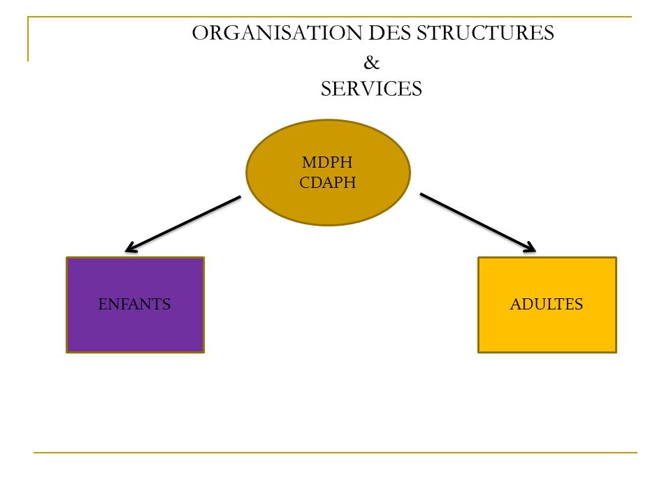 ORGANISATION DES STRUCTURES & SERVICES