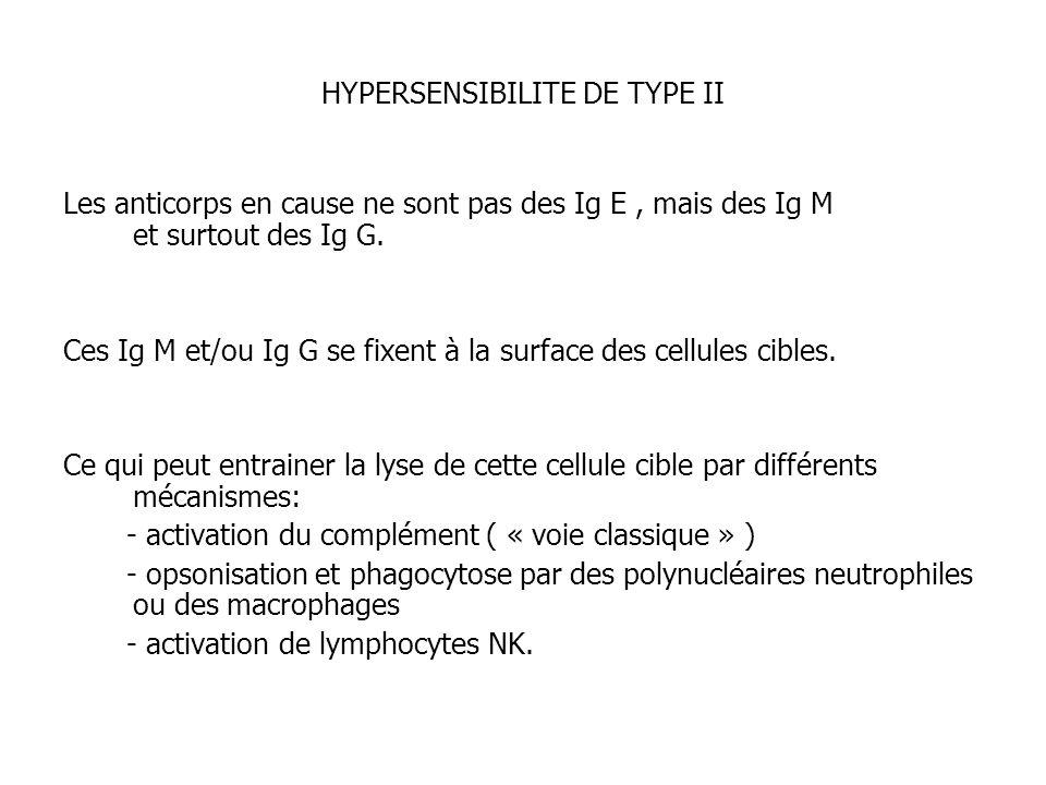 HYPERSENSIBILITE DE TYPE II