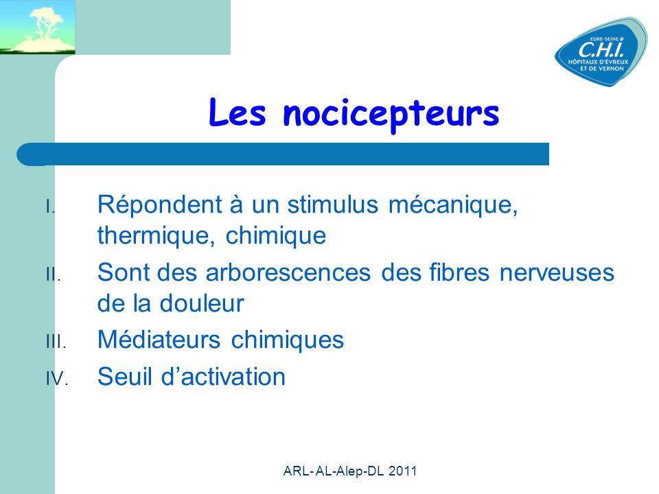 Les nocicepteurs Répondent à un stimulus mécanique, thermique, chimique. Sont des arborescences des fibres nerveuses de la douleur.