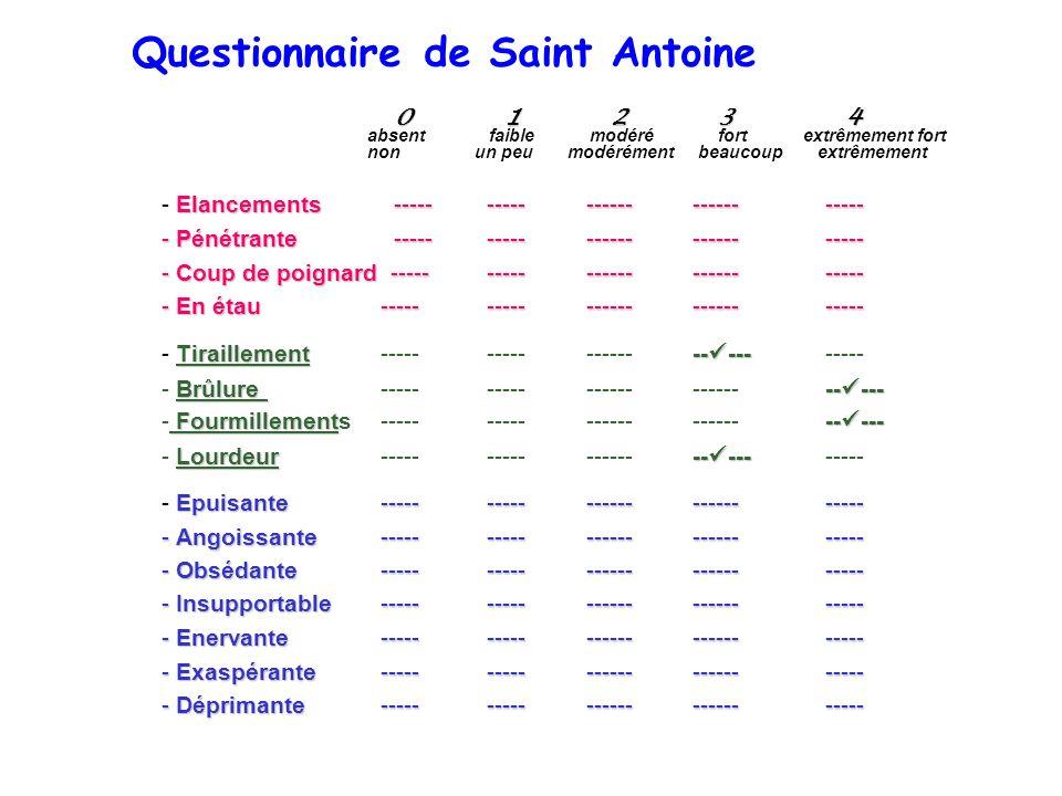 Questionnaire de Saint Antoine