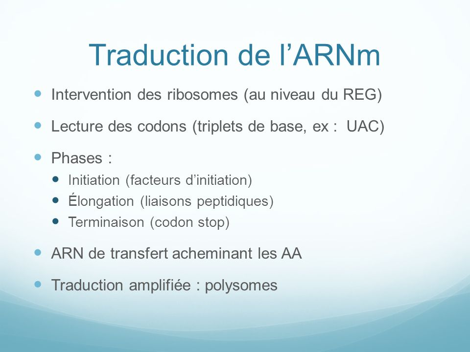 Traduction de l'ARNm Intervention des ribosomes (au niveau du REG)
