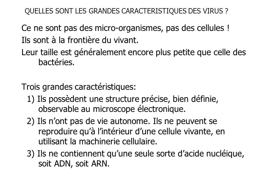 QUELLES SONT LES GRANDES CARACTERISTIQUES DES VIRUS