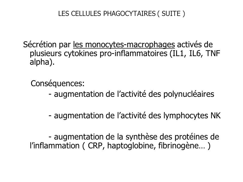 LES CELLULES PHAGOCYTAIRES ( SUITE )