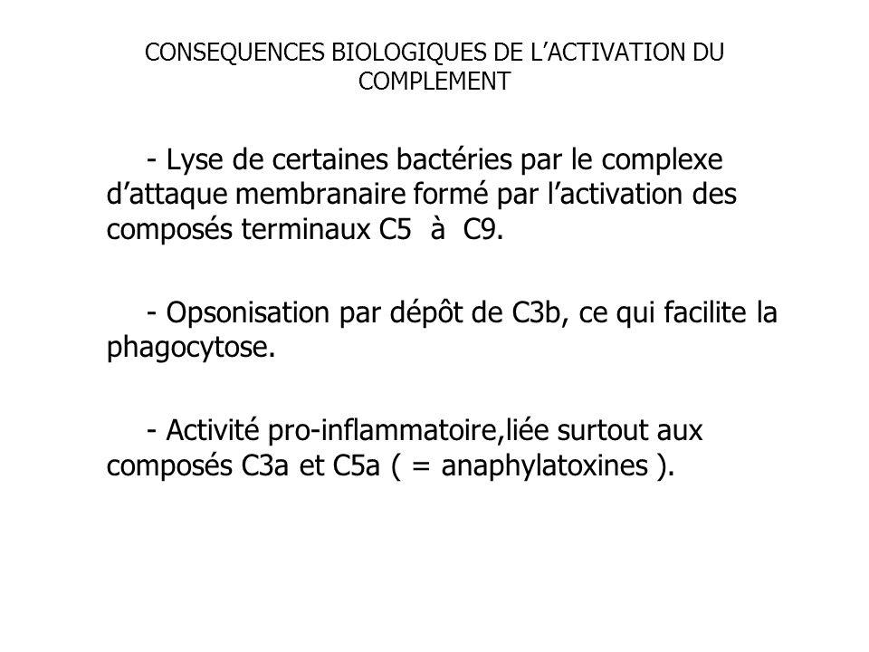 CONSEQUENCES BIOLOGIQUES DE L'ACTIVATION DU COMPLEMENT