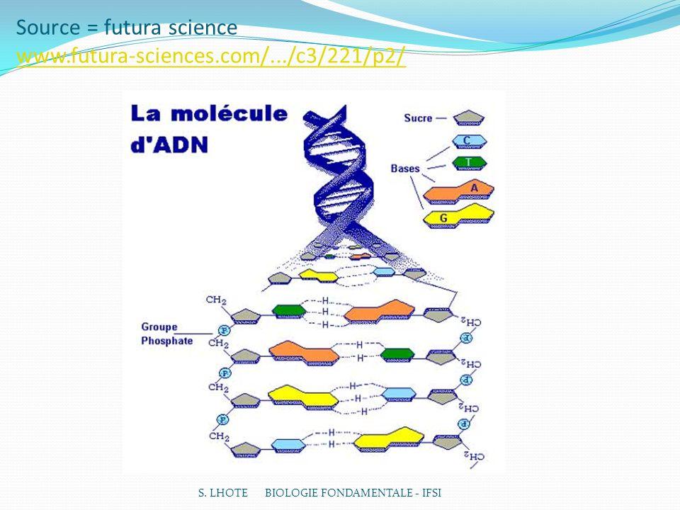Source = futura science www.futura-sciences.com/.../c3/221/p2/